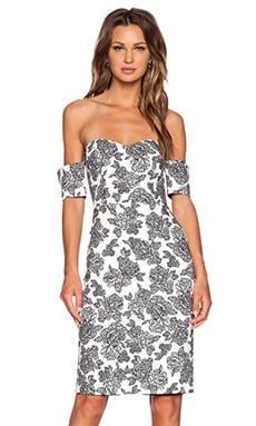 Line & Dot Rose Stroke Tube Dress in Noir Bloom