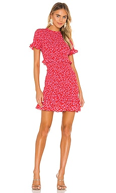 Faye Dress LIKELY $228 NEW ARRIVAL