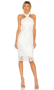 Lace Carolyn Dress LIKELY $268 NEW
