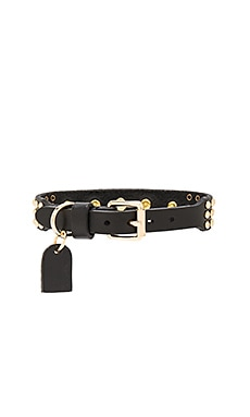 Linea Pelle Multi Stud Dog Collar in Black & Gold
