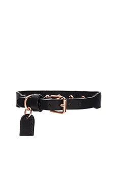Linea Pelle Studded Dog Collar in Black & Rose Gold