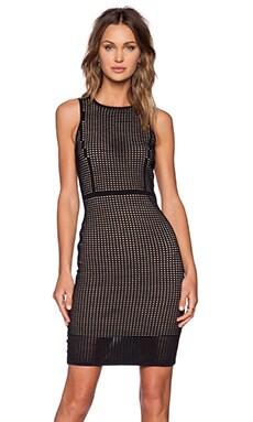 Line Foster Dress in Caviar & Nude
