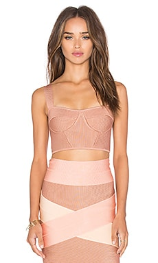 Bustier Crop Top in Rose