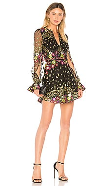 Kensington Dress Lovers + Friends $238 BEST SELLER