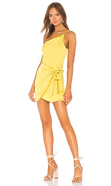 Karen Mini Dress Lovers + Friends $168