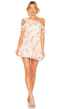 Gamine Dress Lovers + Friends $228