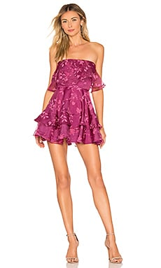 Bexley Mini Dress Lovers + Friends $198