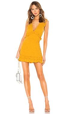Georgine Mini Dress Lovers + Friends $228 NEW ARRIVAL