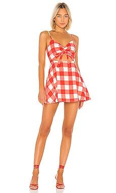 Trixie Mini Dress Lovers + Friends $52