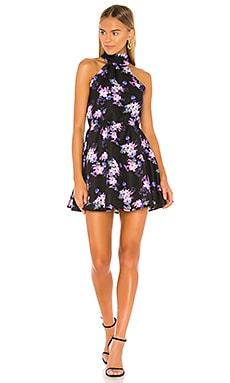 Andrew Mini Dress Lovers + Friends $108