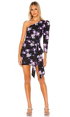 Sullie Mini Dress Lovers + Friends $220
