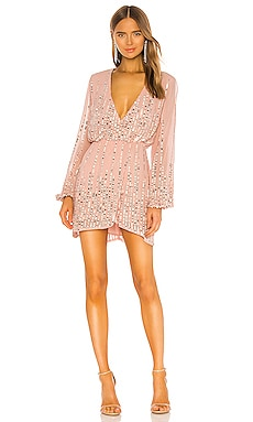 Poppy Mini Dress Lovers + Friends $358