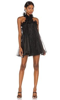 Capri Mini Dress Lovers + Friends $164