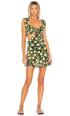 Citrina Mini Dress Lovers + Friends $168