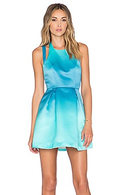x REVOLVE Mega Fit & Flare Dress