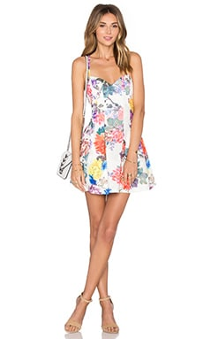 x REVOLVE Abbie Fit & Flare Dress in White Floral