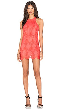 Lovers + Friends Caspian Shift Dress in Coral Reef