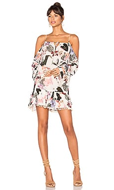 Tropical Oasis Dress in Ivory Floral