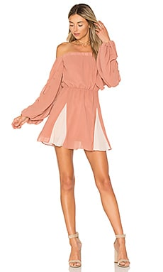 x REVOLVE Windblown Dress in Rose & Tulip