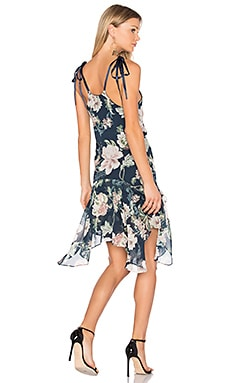 Dahlia Drop Waist Dress