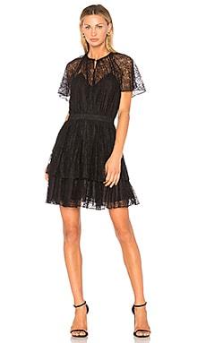 Plume Lace Mini Dress