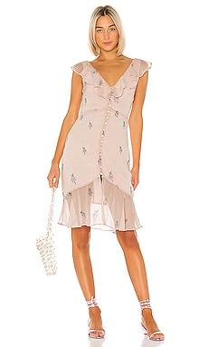 Ciro Embroidered Dress LPA $73