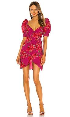 Araceli Dress LPA $198