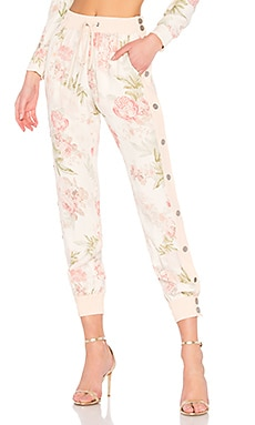 Pant 552 LPA $188 Collections