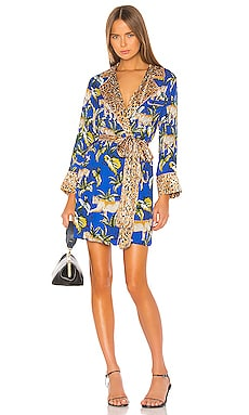 Moonshadows Robe Dress Le Superbe $291