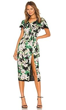 Gardenia Dress Le Superbe $315