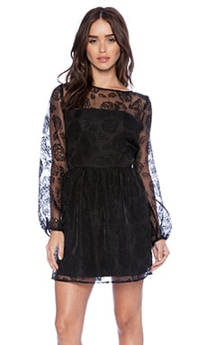 Lucca Couture Lace Yoke Dress in Black