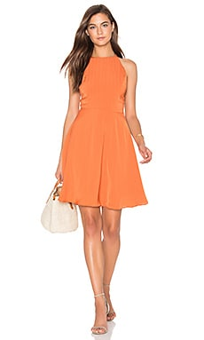 Lucy Paris Laura Flare Dress in Rust