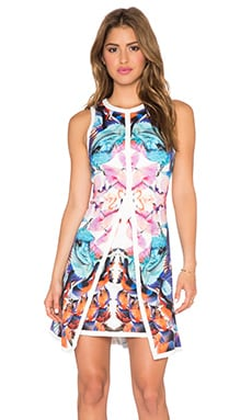 Lumier Birds of Paradise Flare Dress in Pink & White