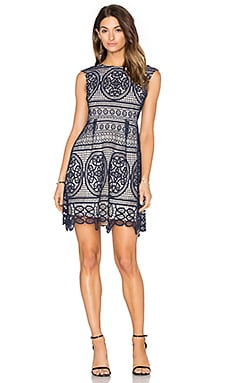 Lumier Lady Like Fit & Flare Dress in Navy & Nude Lining