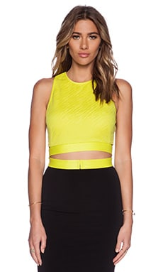 Lumier Animal Instinct Crop Top in Yellow