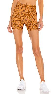 Heat Wild Dandelion Short Maaji $66