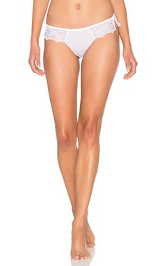 Audace Brazilian Bottom