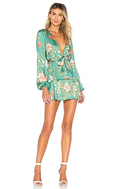 Berkshire Dress MAJORELLE $218