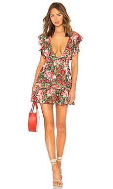 Misty Dress MAJORELLE $178