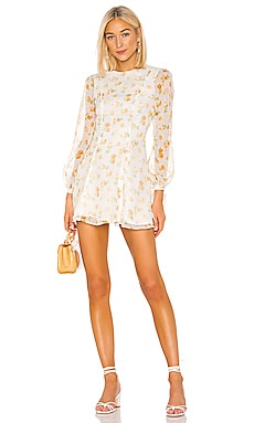 Aspen Mini Dress MAJORELLE $228
