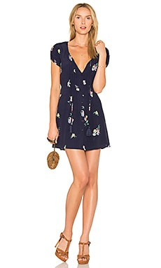 Amber Dress in Navy Floral