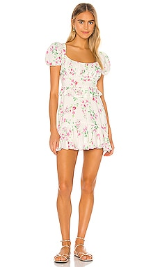 Lakeland Mini Dress