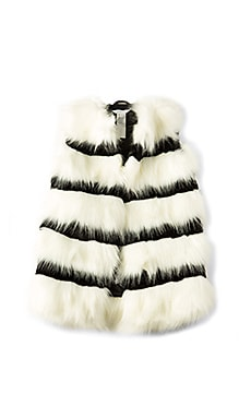 Faux Fur Stripe Vest
