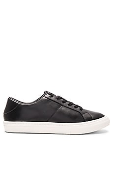 Empire Low Top Sneaker in Black