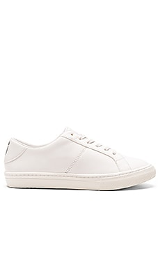 Empire Low Top Sneaker in Ivory