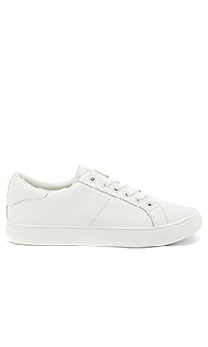 Empire Low Top Sneaker in White