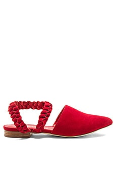 Alan Sandal in Red