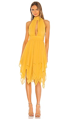 x REVOLVE Andrea Dress Michael Costello $137