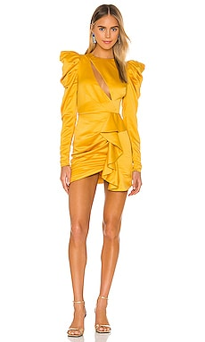 x REVOLVE Valeria Mini Dress Michael Costello $198