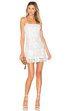 Embroidered Dress in White & White